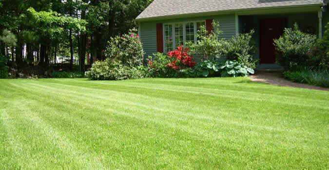 Lawn Mowing Seattle Wa Chop Landscaping